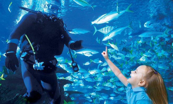 Aquarium Restaurant - Nashville, TN - Business Profile