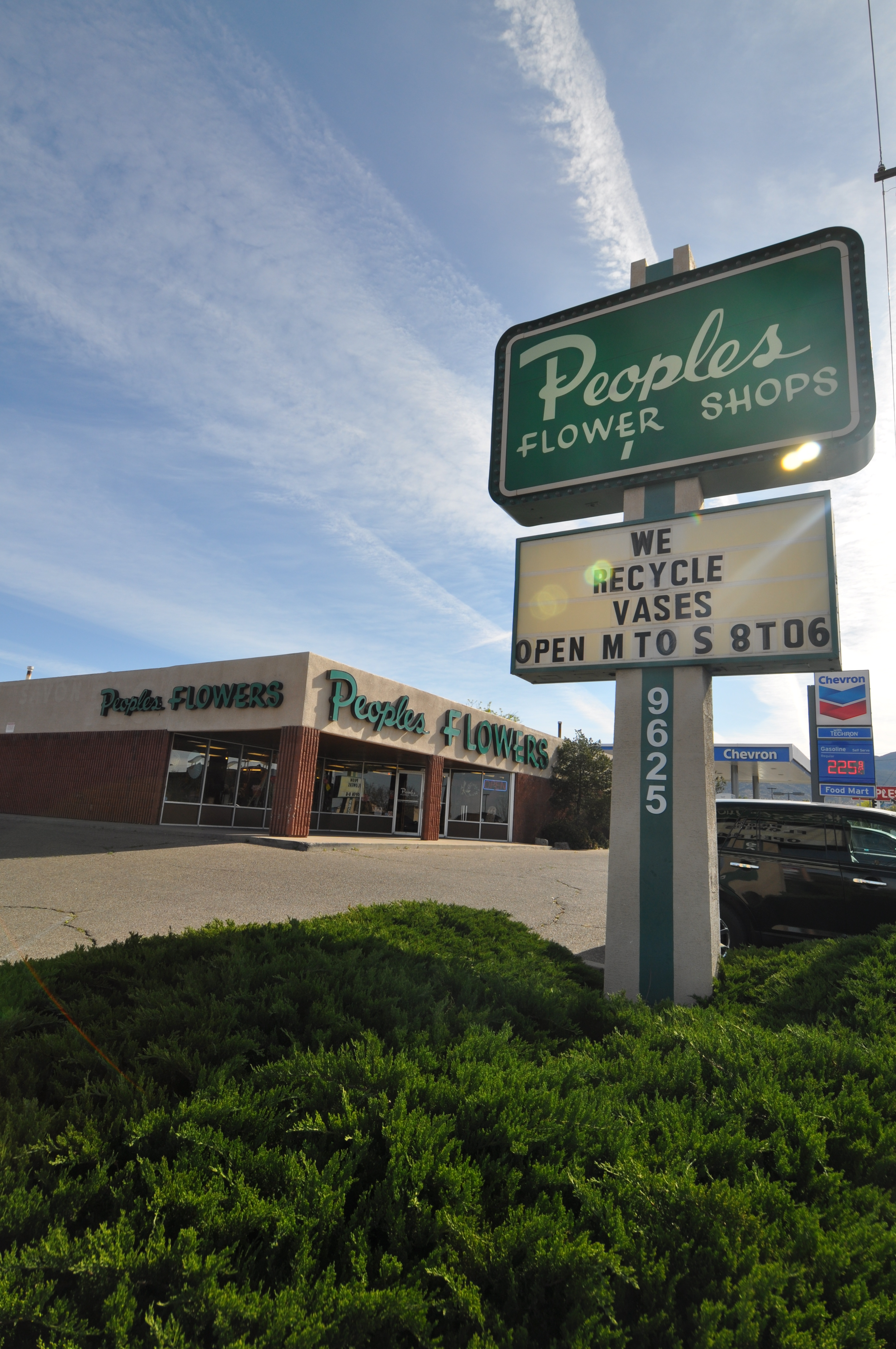 Peoples Flower Shops Far North Location image 25