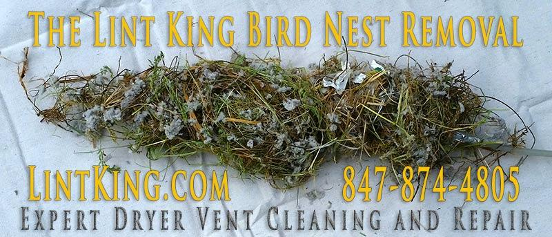 The Lint King Dryer Vent Cleaning Experts. Bird nest removal.