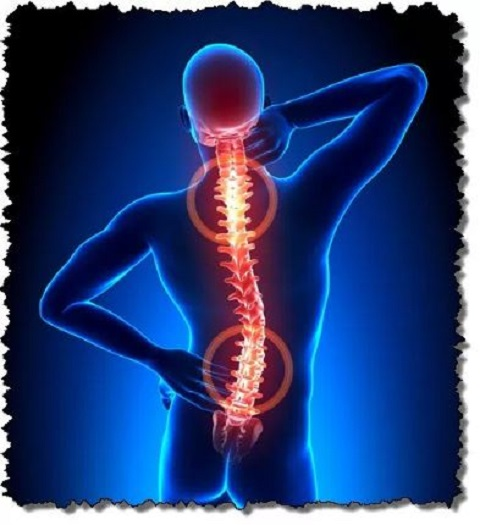 Truth Chiropractic image 0