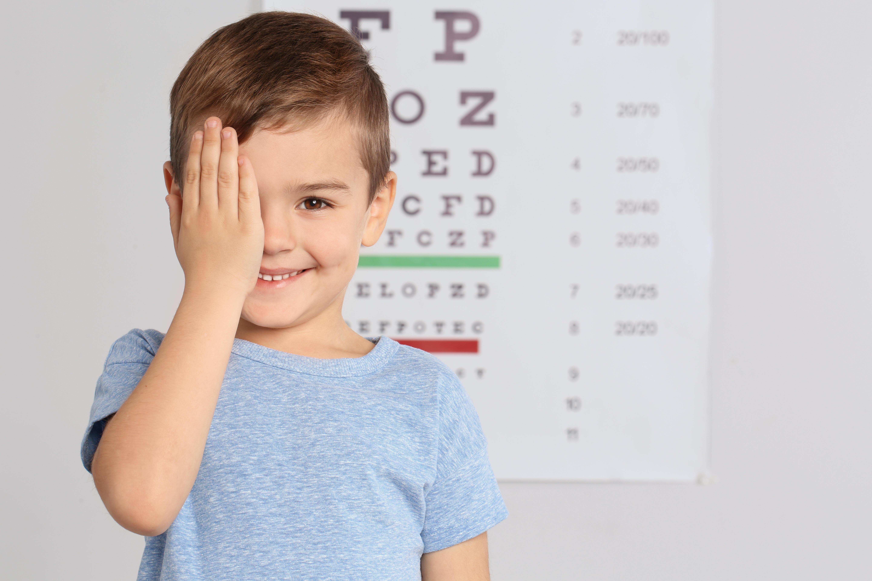Optika Optometrics image 6