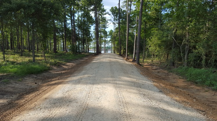 Texas Ace Land Clearing   Land Clearing Houston image 10