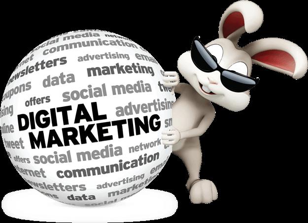 White Rabbit Marketing image 19