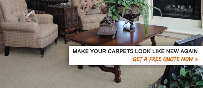 Aquidneck Island Carpet  and  Floor Care image 0