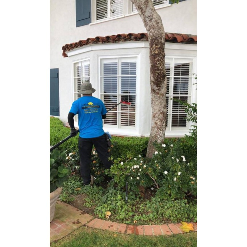 Seaview Window Cleaning image 6