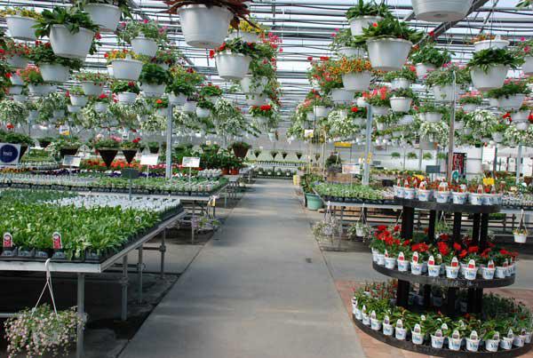 Vite Greenhouses