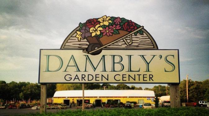 dambly 39 s garden center in berlin nj 08009 citysearch