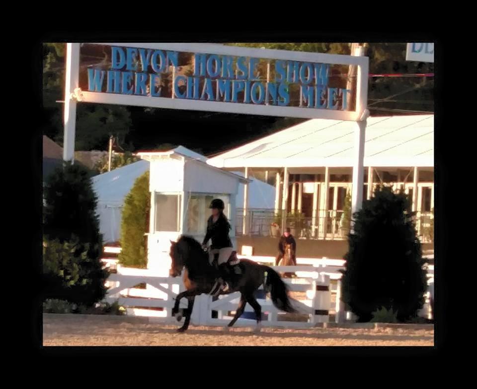 Pineridge Equestrian Center, LLC image 0