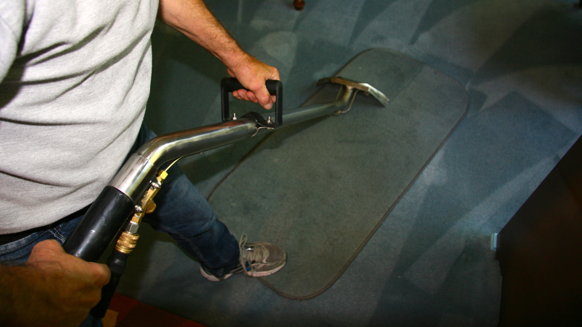 Carpet Care Solution, Mississauga ON | Ourbis