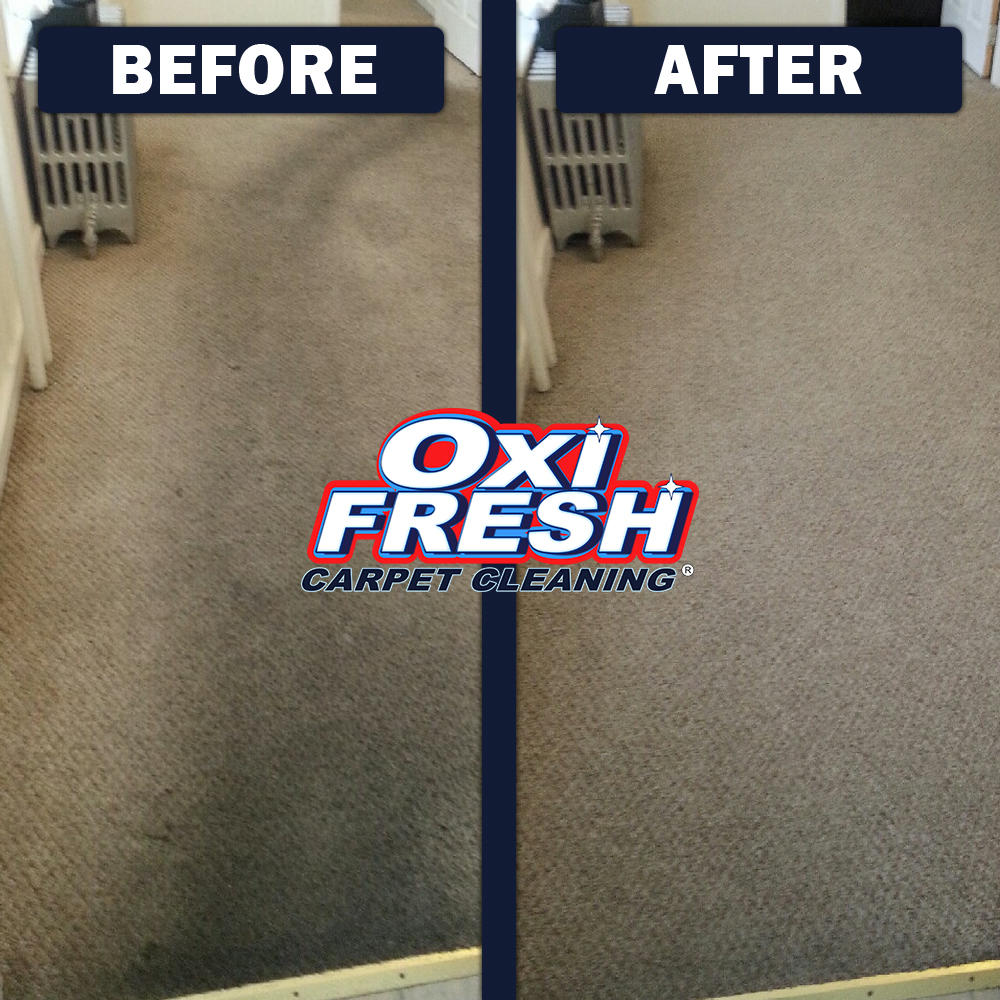 Oxi Fresh of Urbandale Carpet Cleaning image 9