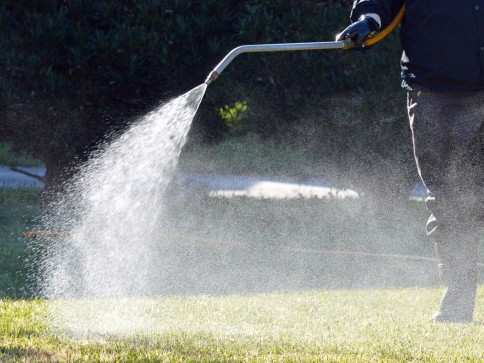 Picture Perfect Lawn Maintenance and Snow Removal image 3