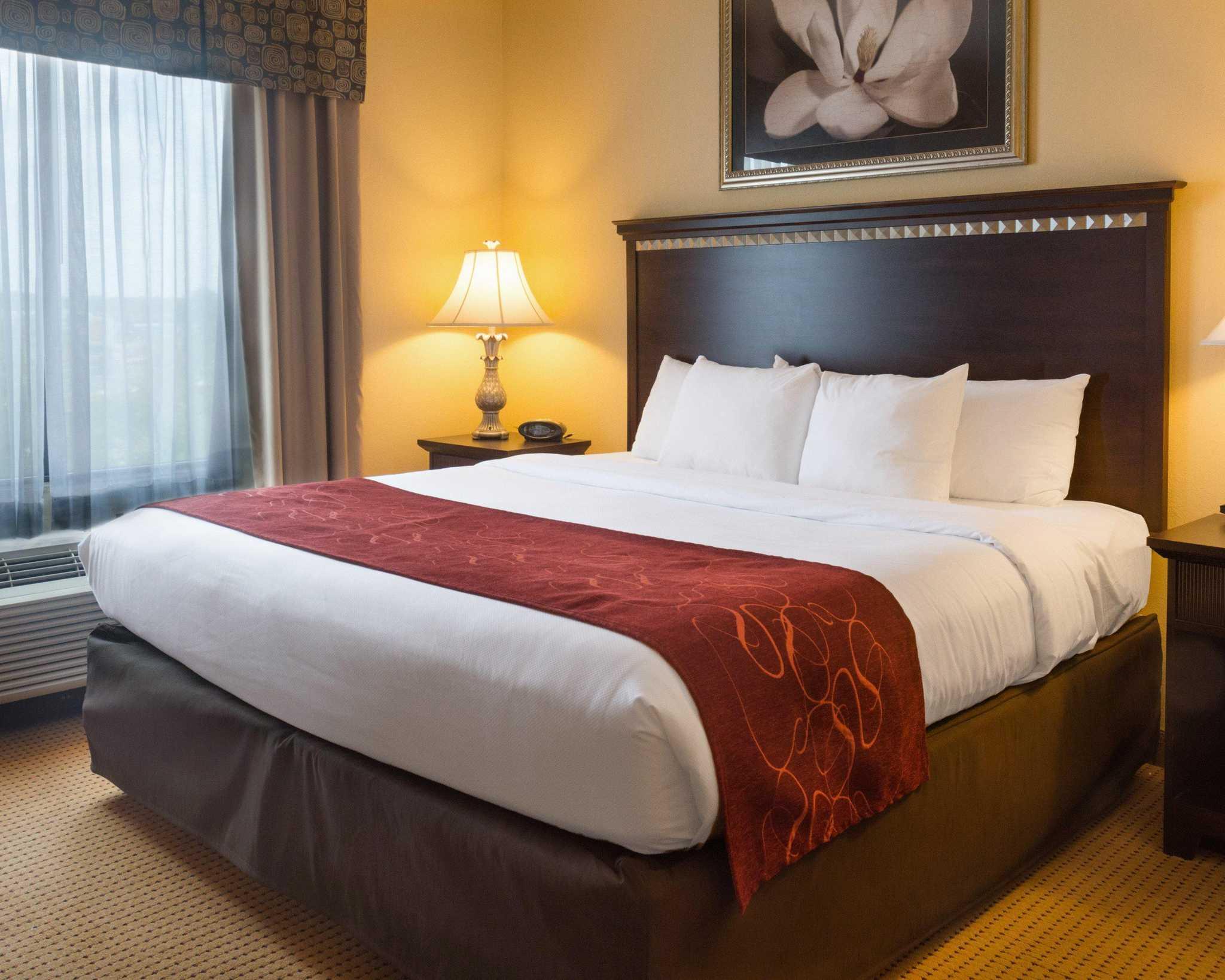 Comfort Suites Fredericksburg North image 29