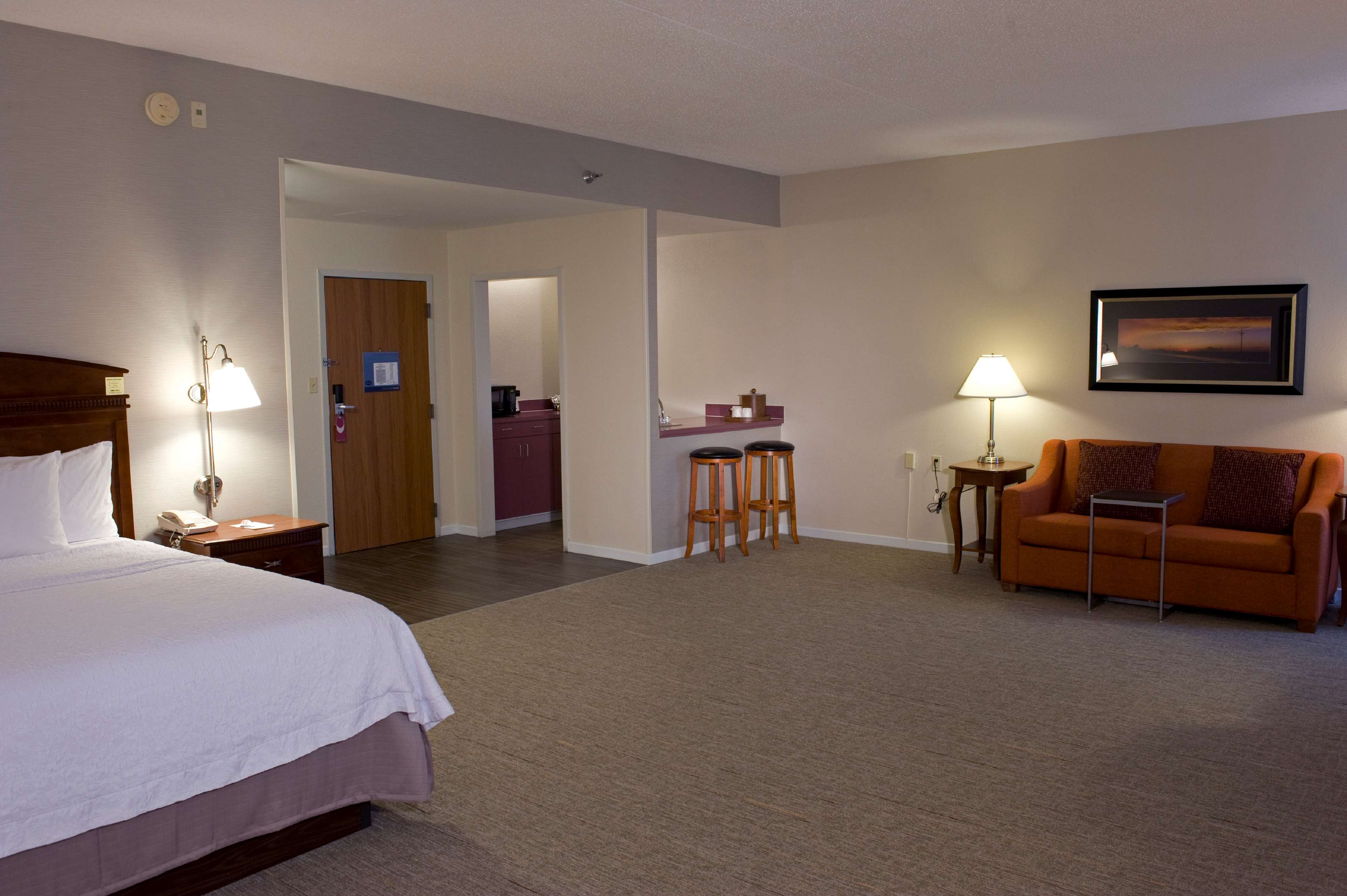 Hampton Inn Springfield-South image 18