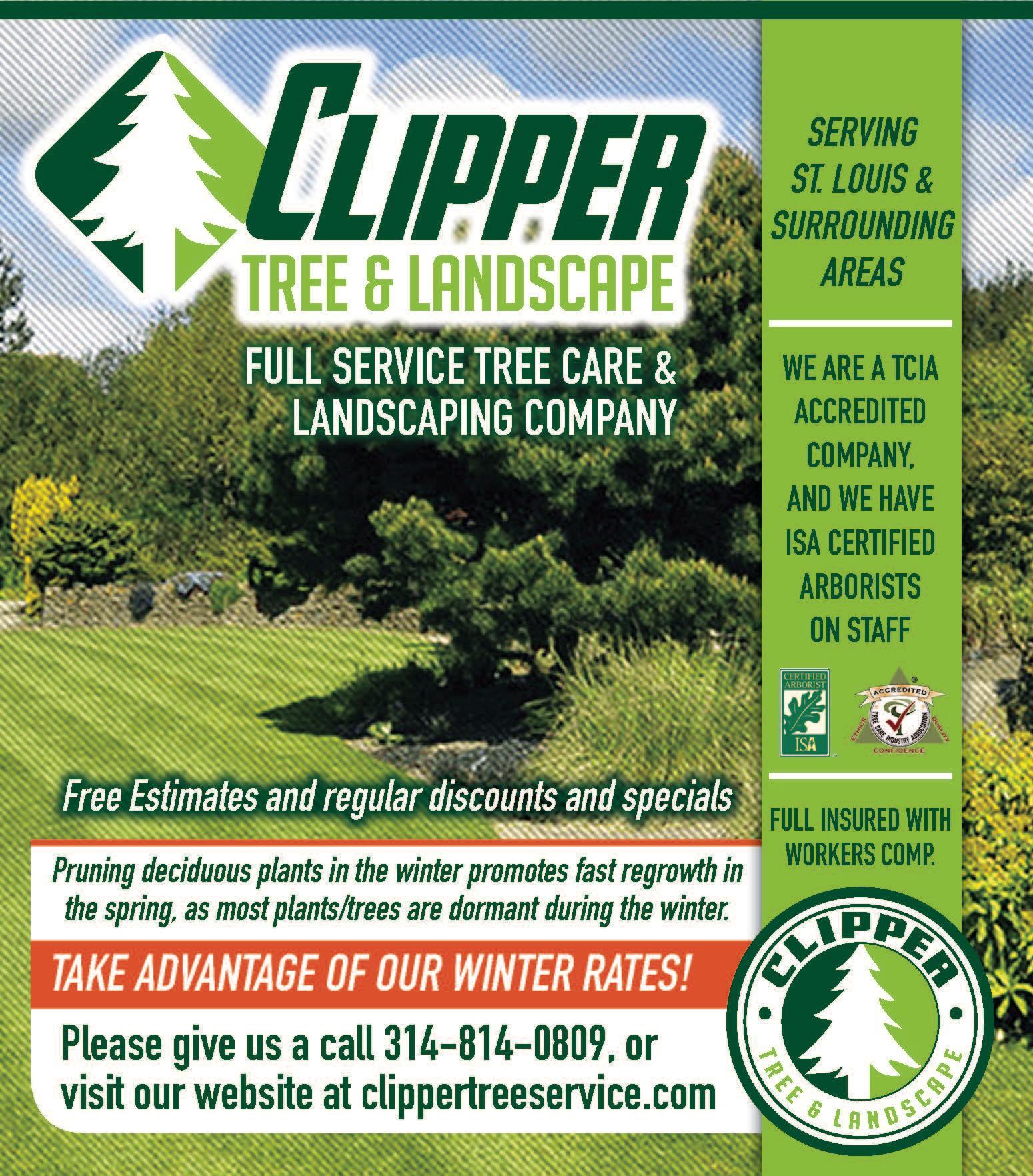 Clipper Tree & Landscape, Inc. image 16