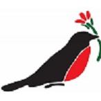Flowers by Robin