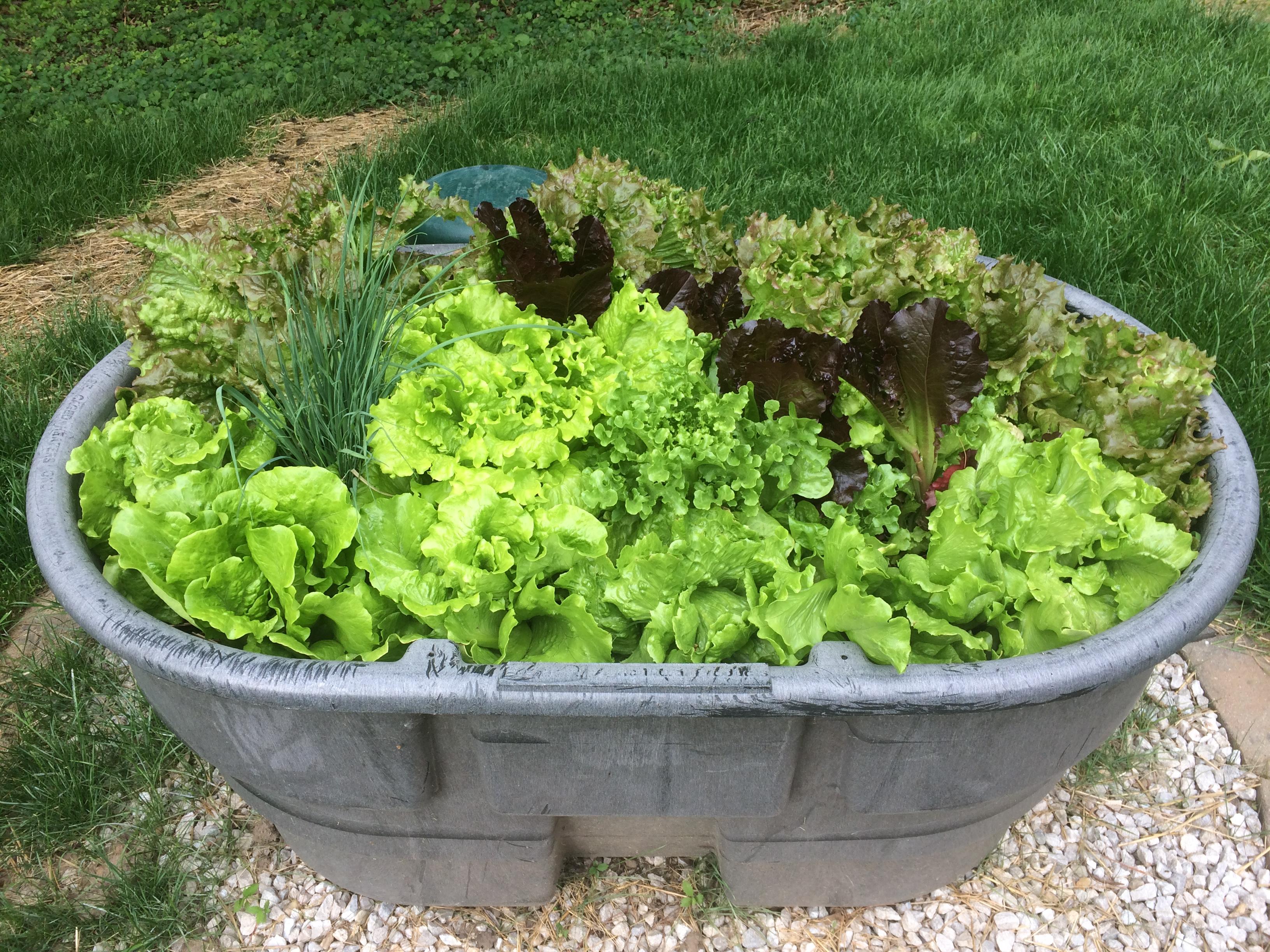 Sower's Harvest, LLC. image 5