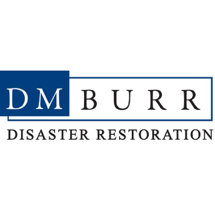 DM Burr Disaster Restoration image 0