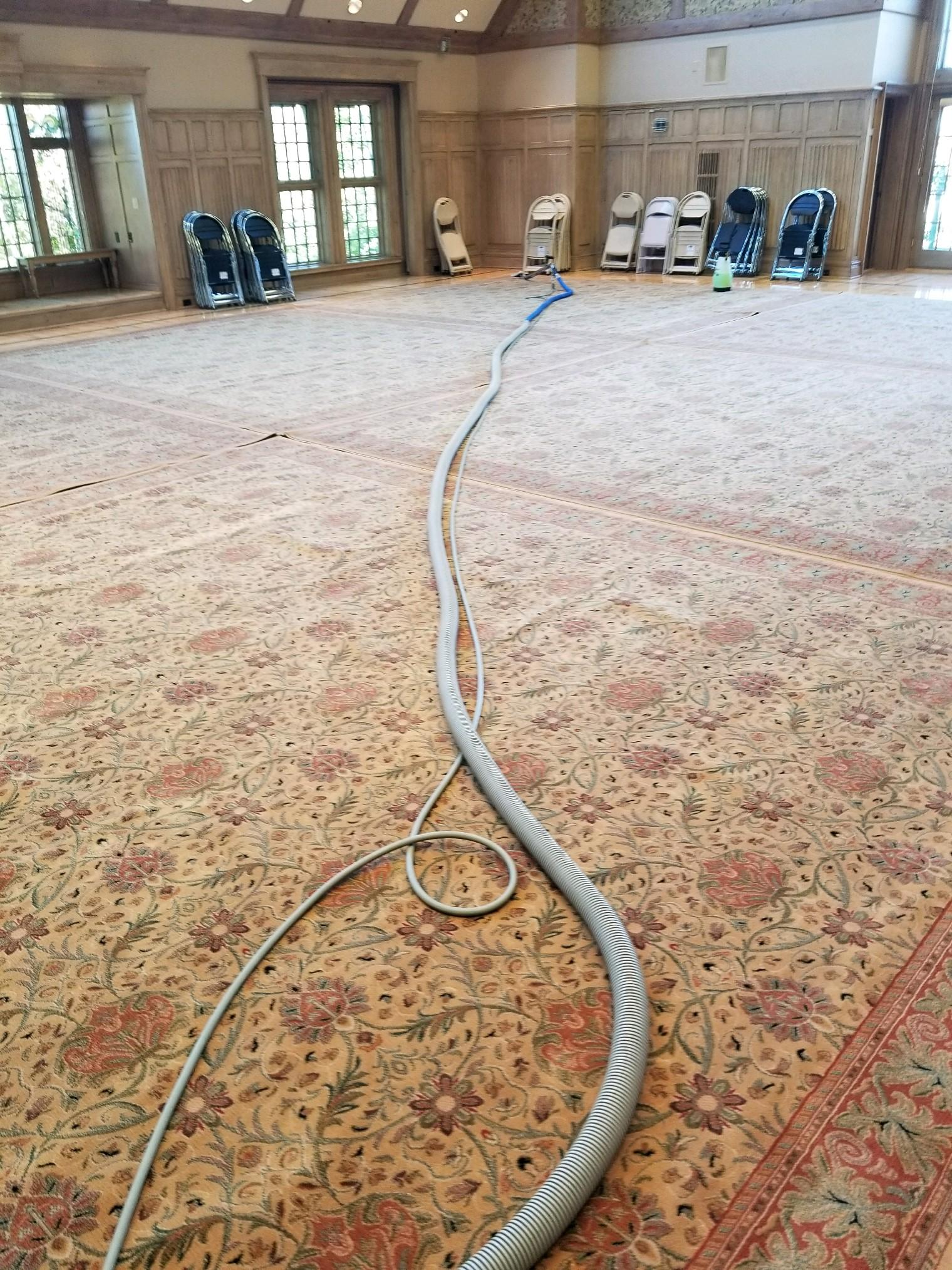 Kelly's Deep Clean Carpet & Upholstery Cleaning image 17