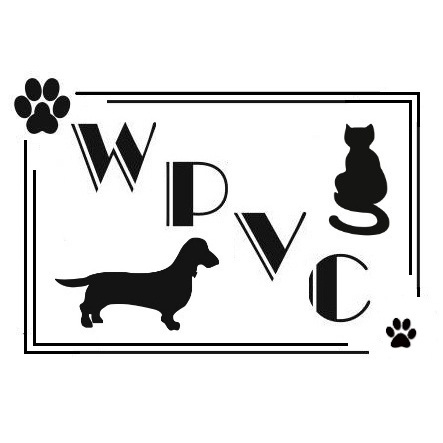 Washington Veterinary image 3