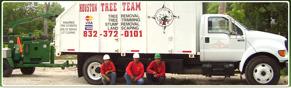 Houston Tree Team image 0