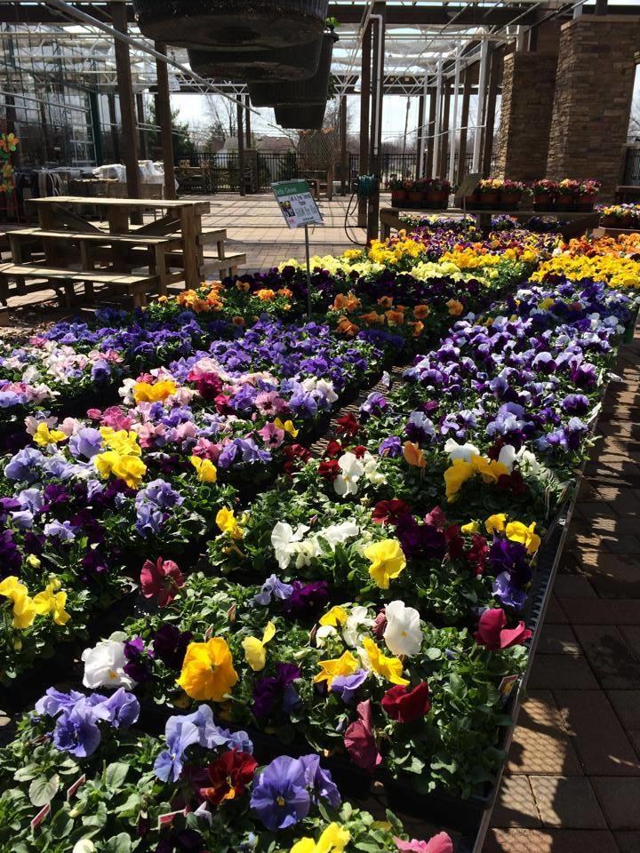 Delhi Flower & Garden Centers