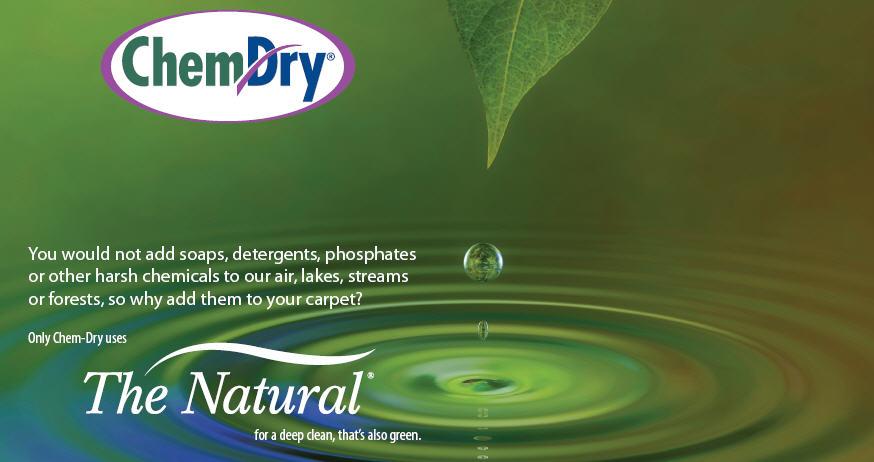 Ivy Green Chem-Dry image 9