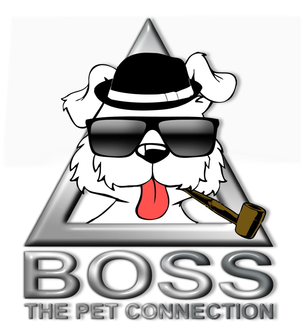 Boss the Pet Connection image 18