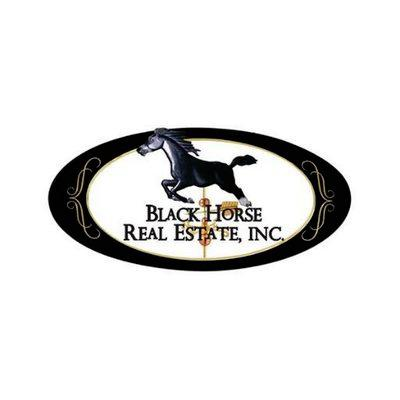 Black Horse Real Estate Inc