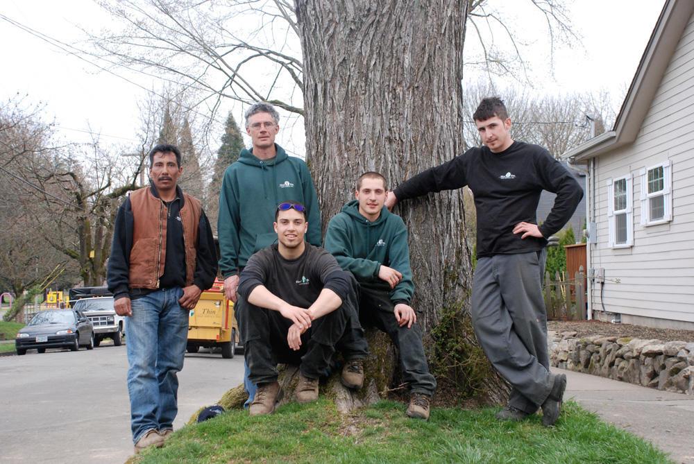 Wind Thin Tree Service Inc. image 4