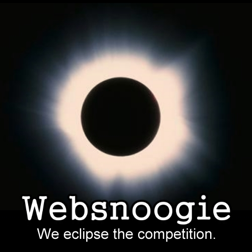 Websnoogie - we eclipse the competition.