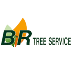 B & R Tree Service, Inc. image 0