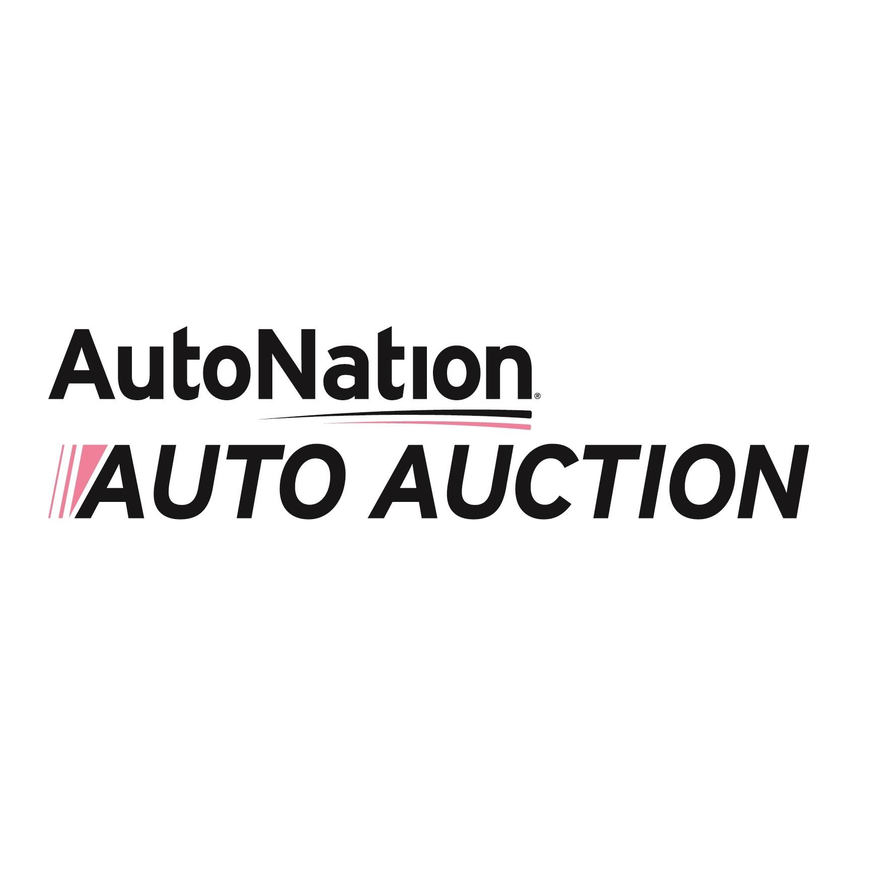 autonation auto auction houston in houston tx 281 506 3. Black Bedroom Furniture Sets. Home Design Ideas