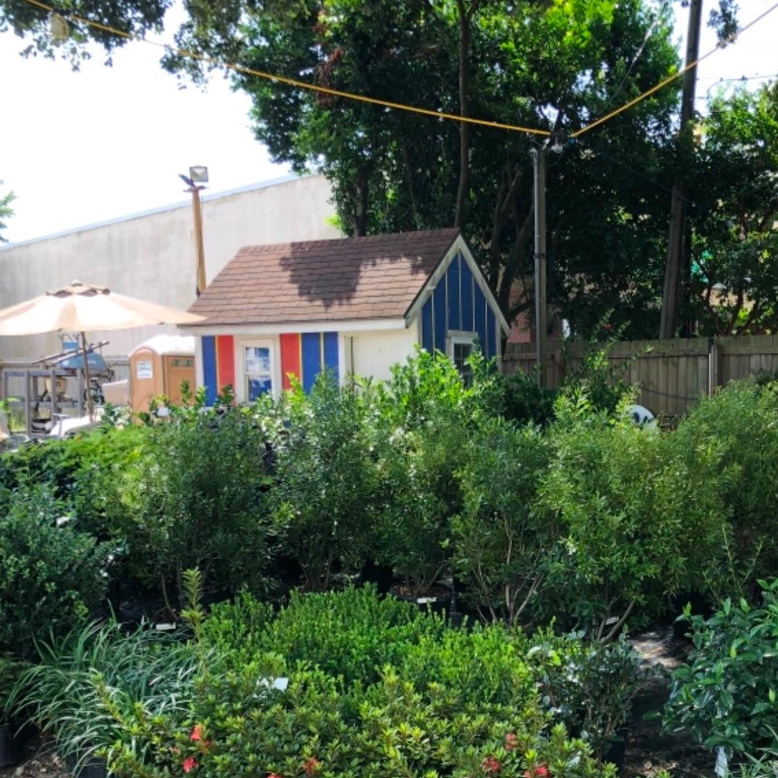 Buenavista's Landscaping