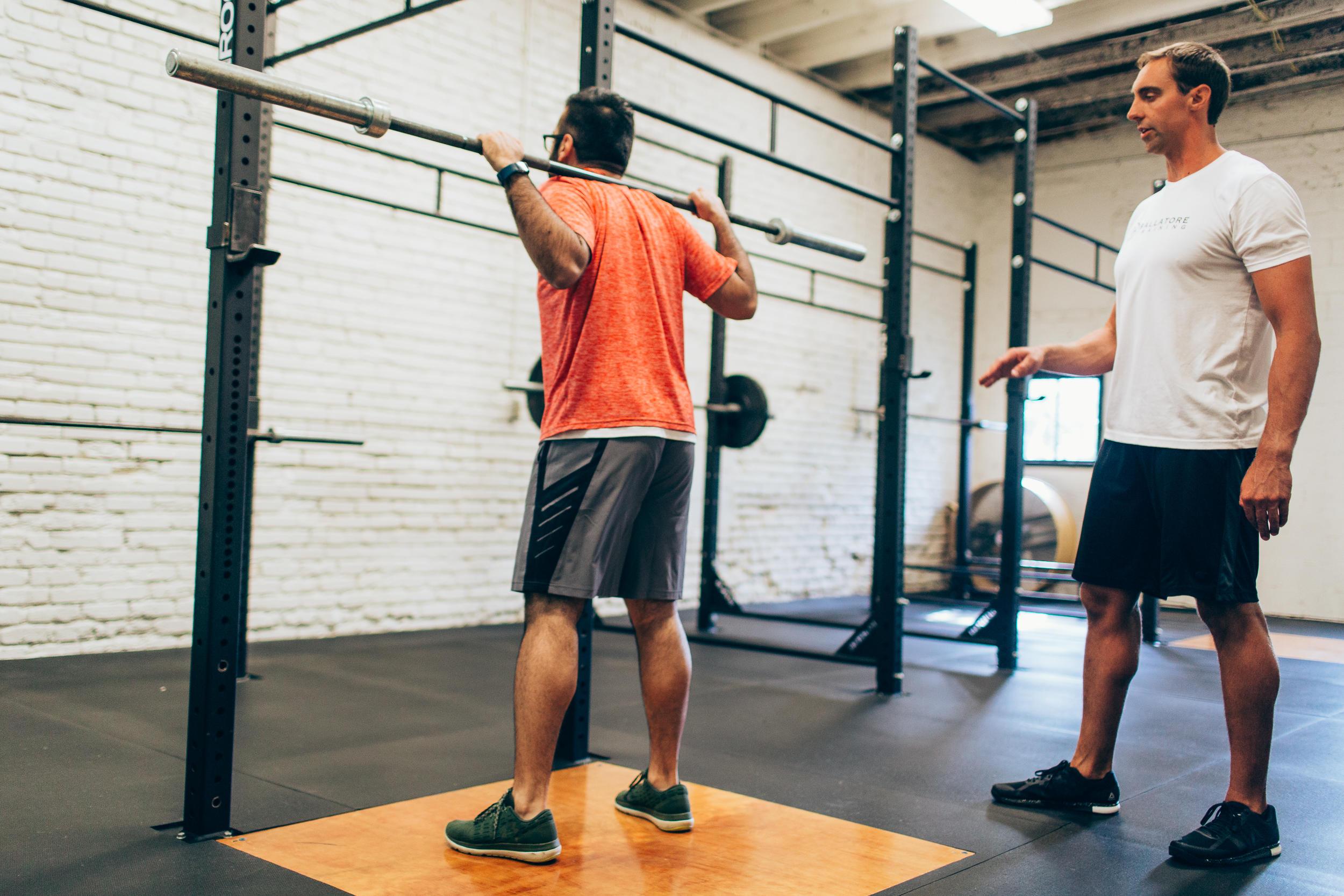 Ballatore Training image 4