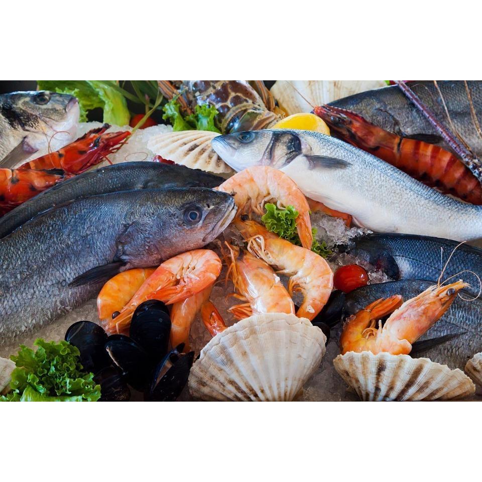 Meat and fish markets detroit michigan company data for Detroit fish market