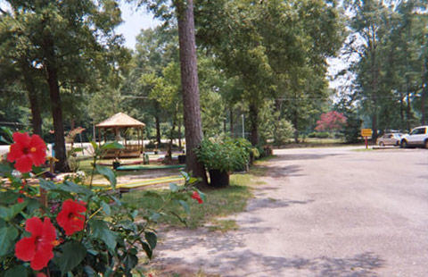 Baton Rouge KOA Holiday image 6