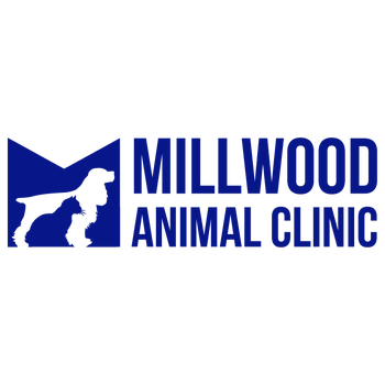 Millwood Animal Clinic