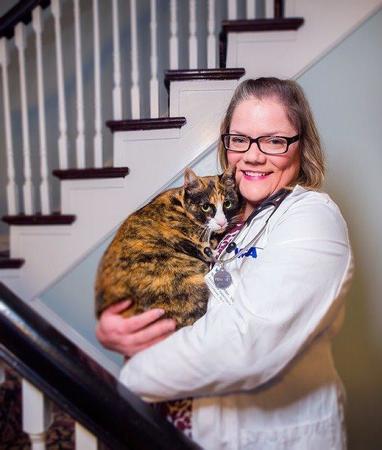 Image 10 | VCA Cat Hospital of Philadelphia