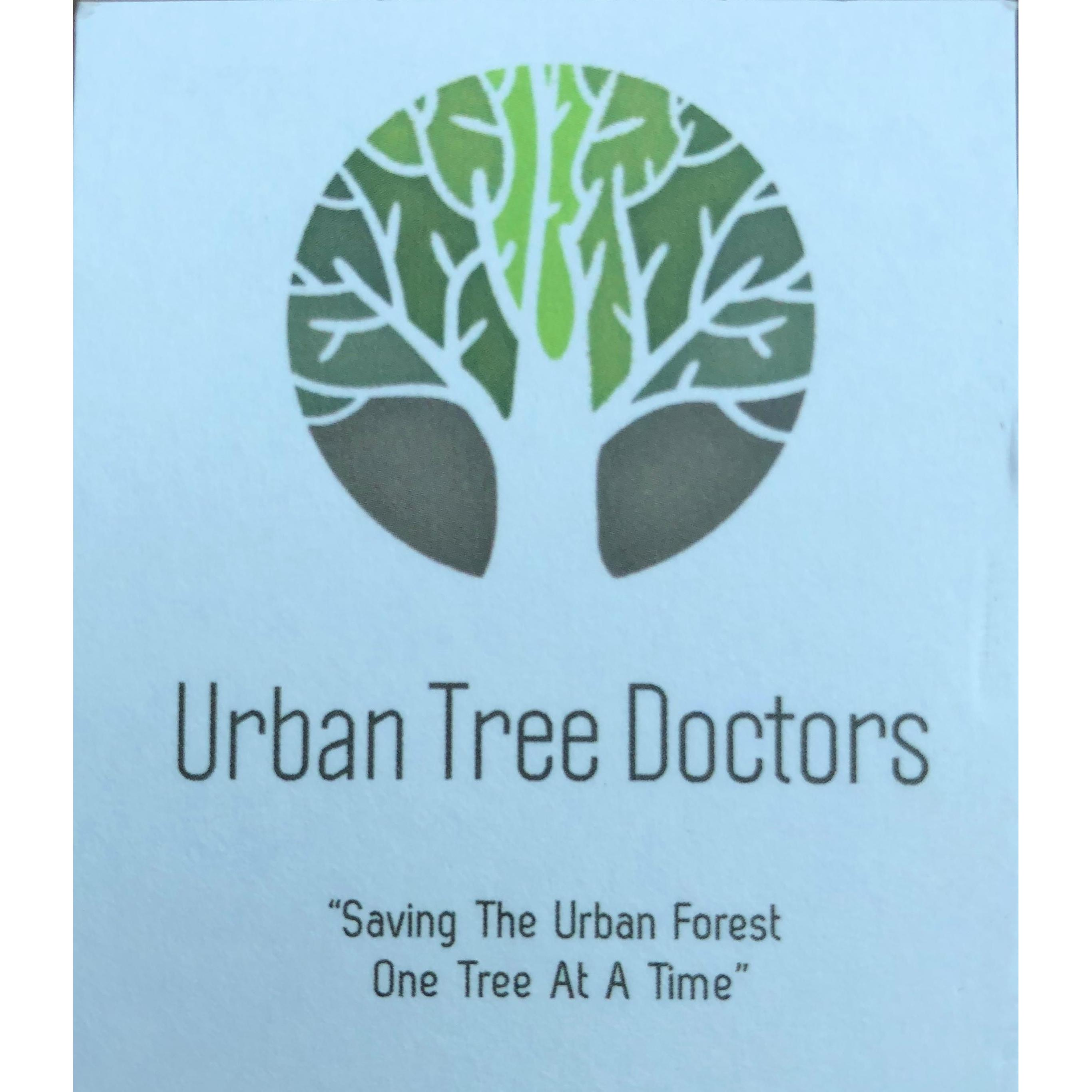 Urban Tree Doctors