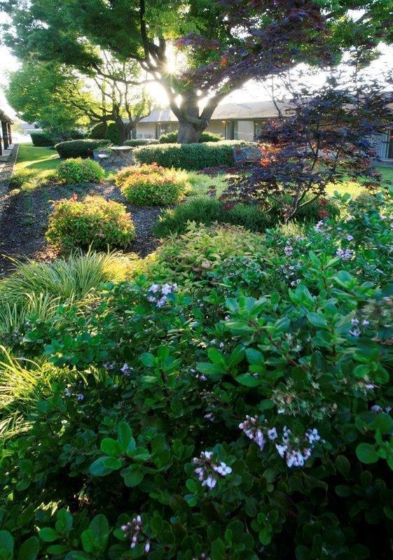 Best Western Garden Inn Santa Rosa Ca Company Page