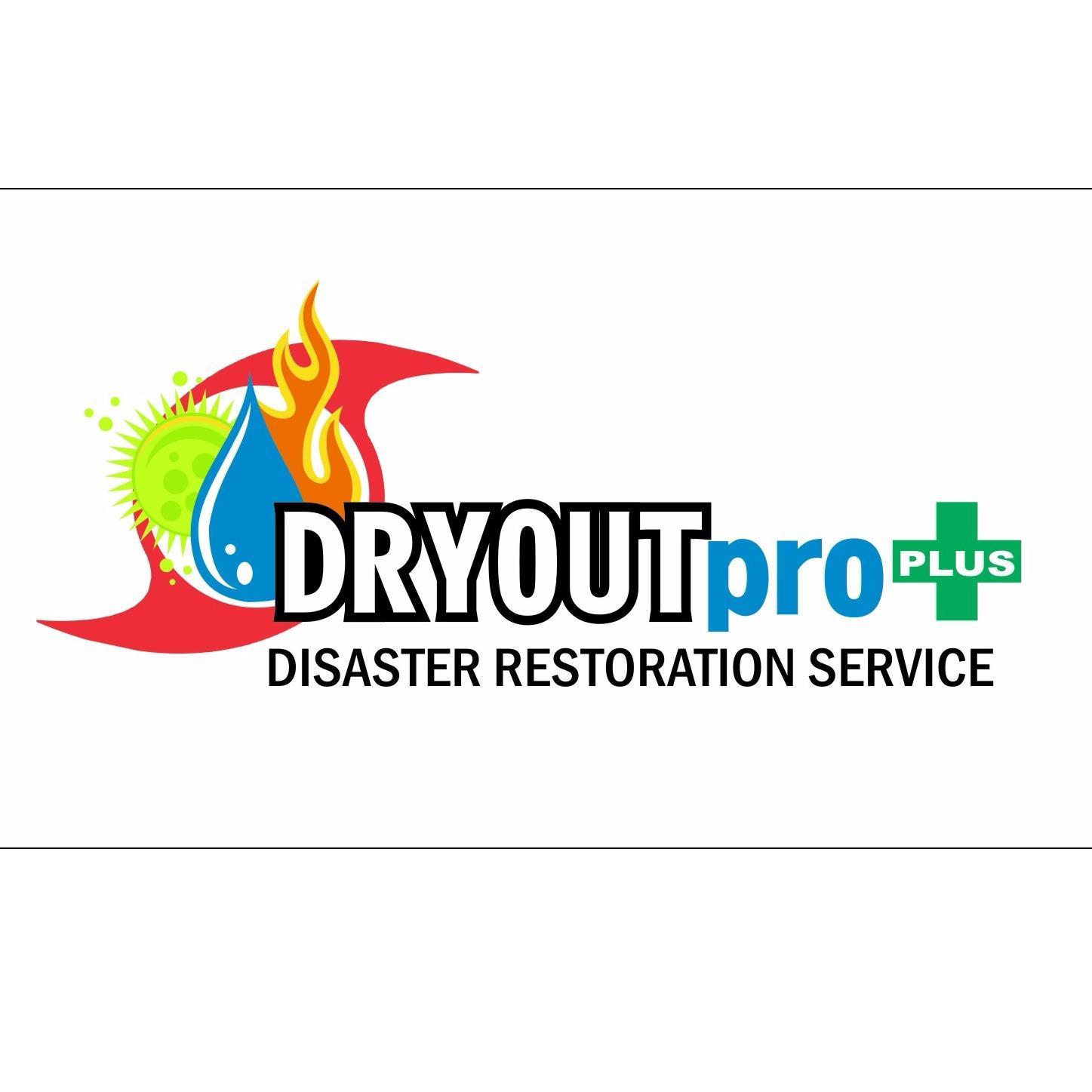 DRYOUTpro PLUS, Inc.