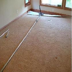 Complete Carpet Care, Inc. image 7