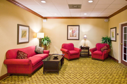Holiday Inn Express & Suites Tampa-Fairgrounds-Casino image 3