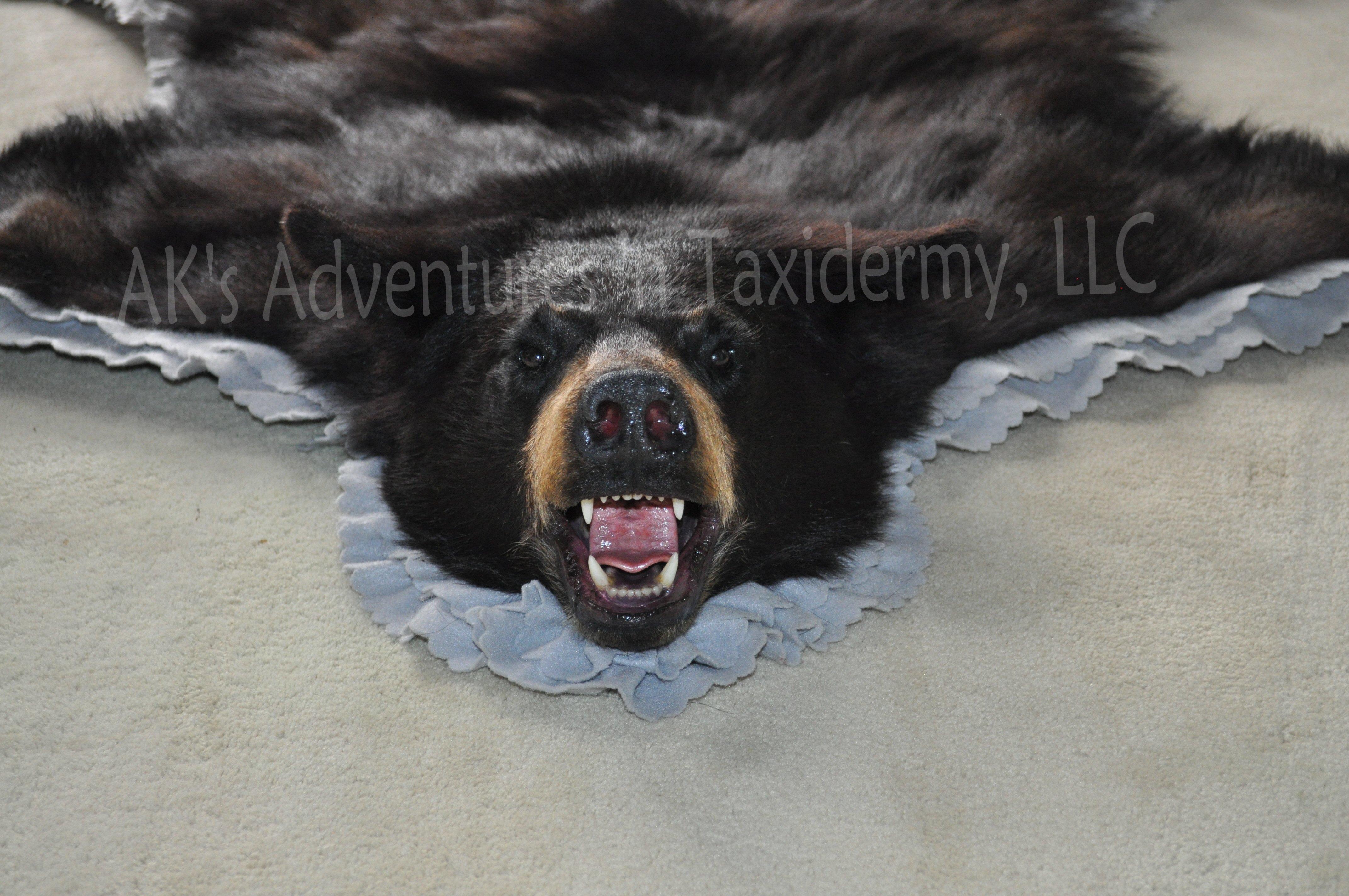 AK's Adventures in Taxidermy, LLC image 5