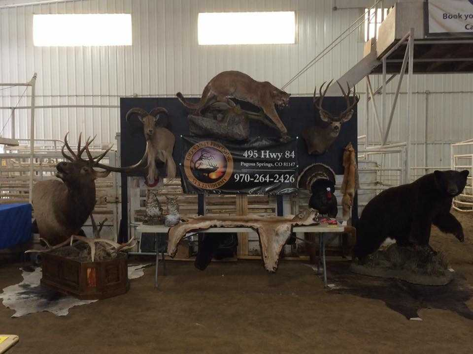 COLES MEAT PROCESSING SYS TAXIDERMY