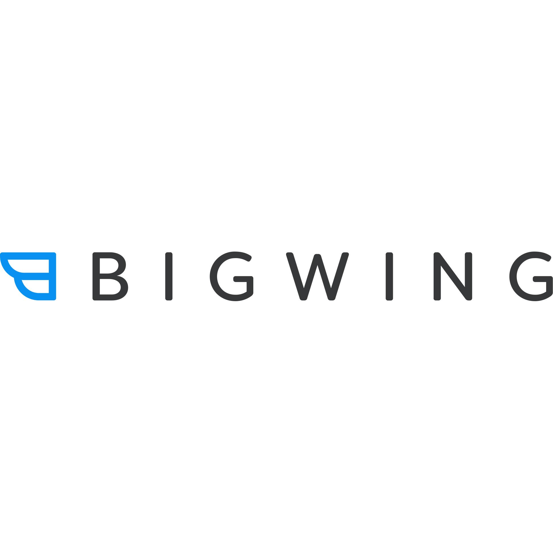BigWing