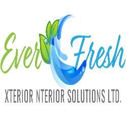Everfresh Xterior Nterior Solutions 1