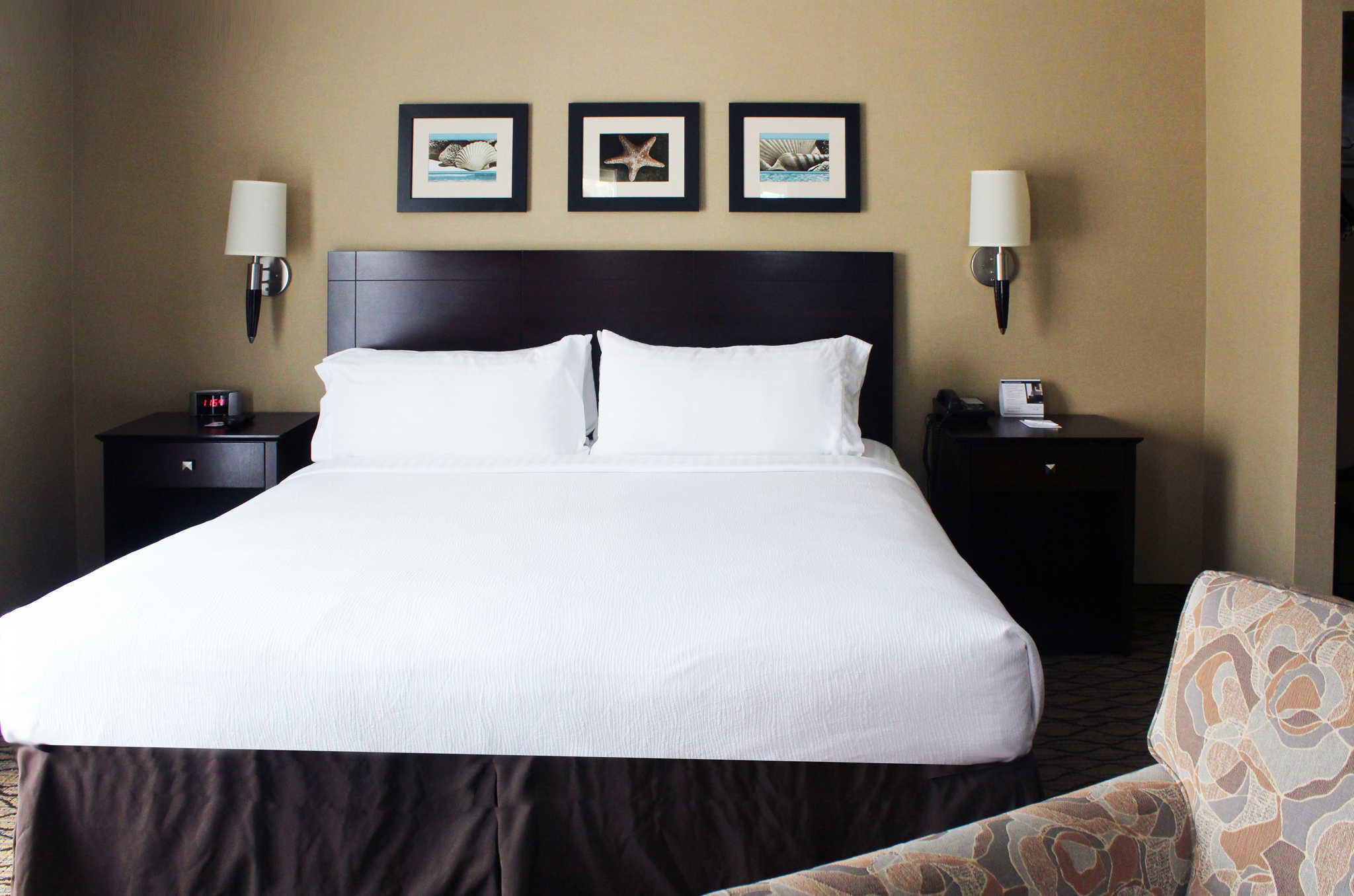The Volare, an Ascend Hotel Collection Member image 13