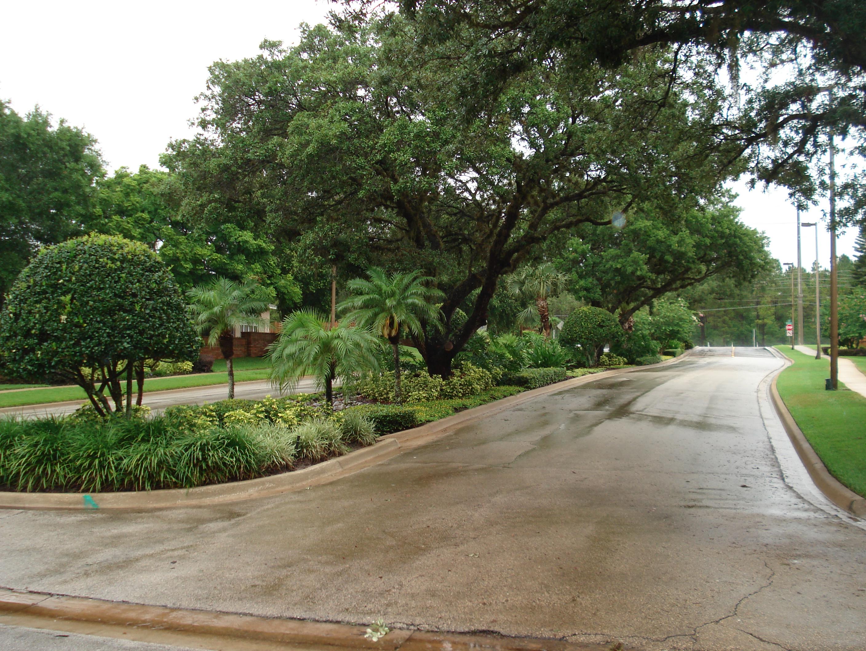 DS Landscape & Maintenance image 5