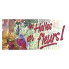 Les Halles en Fleurs Inc